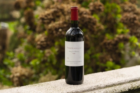 Bodegas Artadi Tempranillo 'Vineyard Selection'