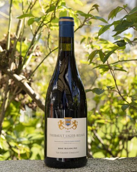 Domaine Thibault Liger-Belair, Pinot Noir 'Les Grands Chaillots'